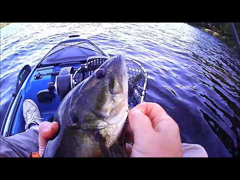 Kayak Bass Fishing - Lake Hawkins Texas 10-26-2018