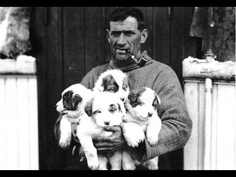 Tom Crean, Antarctic Explorer (The Ballad)