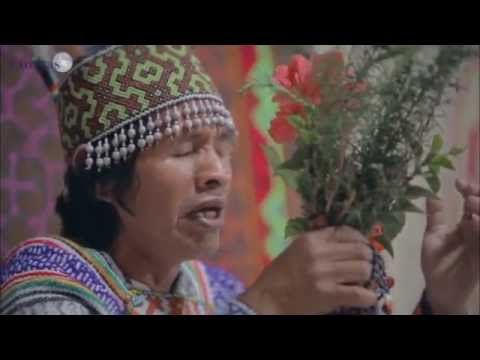 Icaros magical songs during Ayahuasca Ceremony