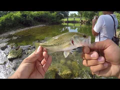 Creek Fishing Plano Tx (white Rock Creek)