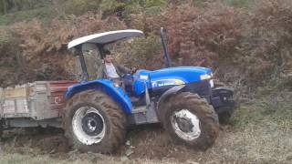 Newholland td75s