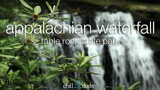 Relaxing Ambient Waterfall Video for Deep Sleep | Appalachian Waterfall