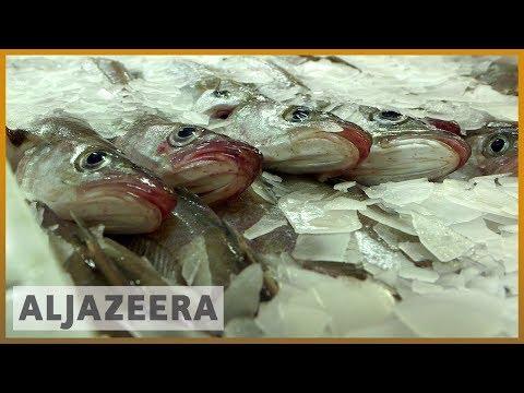 🏴 Scotland's Fishing Industry Worried About Future Post-Brexit | Al Jazeera English