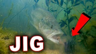 Bed Fishing Tricks With Amazing Underwater Footage!