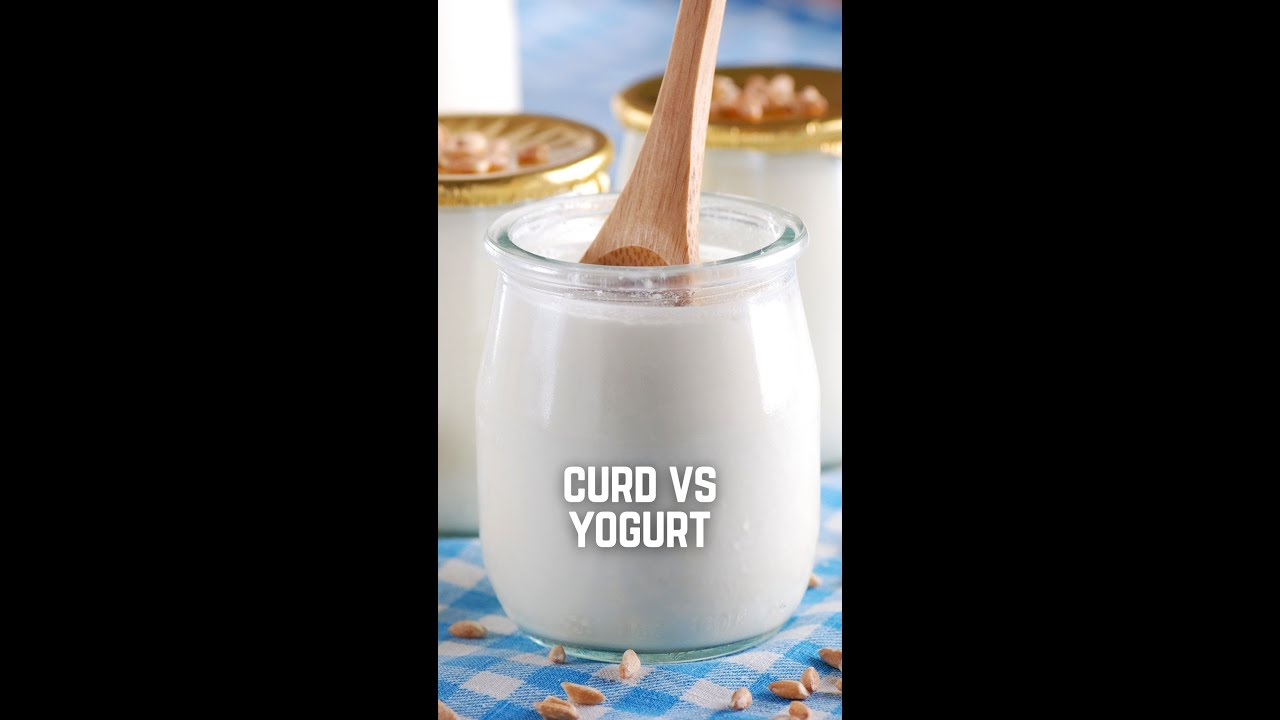 What's the Difference between Curd and Yogurt? A Food Show with Kunal Kapur   #Dahi #Shorts #Yogurt