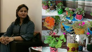 How I care my plants,money plant and diy planters, गमलो की देखभाल कैसे करें,anvesha,s creativity