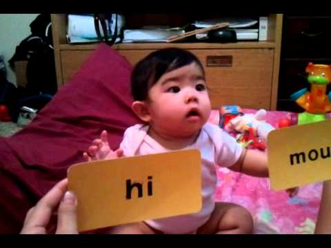 Your Baby Can Read - Stage 1 Word/Picture Flash Cards - YouTube