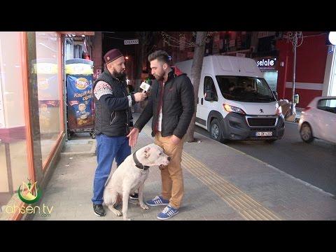 Hayvan Sevgisi Üzerine Muhteşem Bir Röportaj