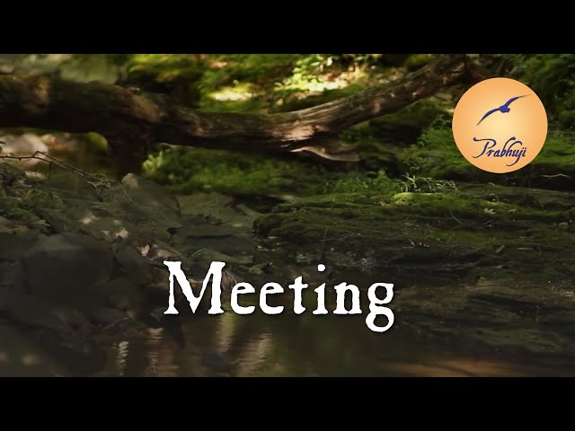Meeting -- by Prabhuji
