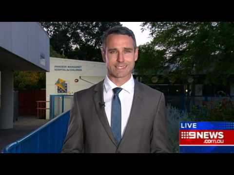 Dogs Euthanised | 9 News Perth