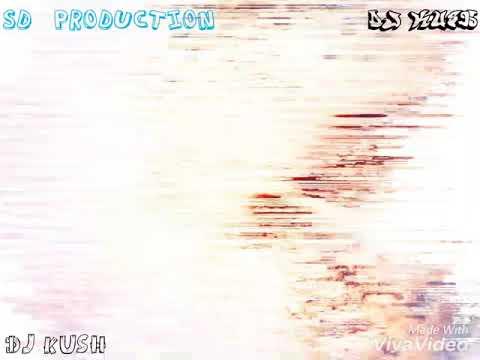 Paisa (Remix)Dj Kush