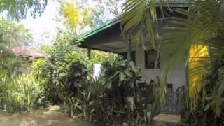 Jamaica Natur Reisen Video über das Lighthouse Inn 2 in Negril Jamaika - Teil 1, der Garten.