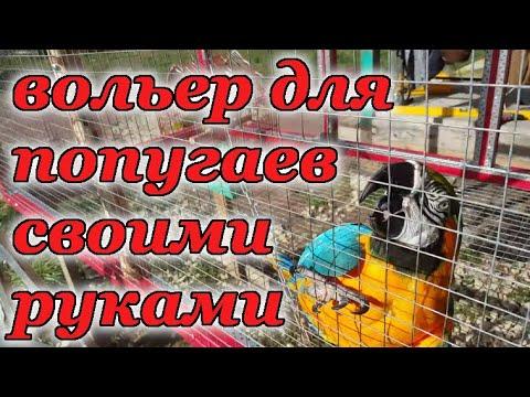 Видео: Вольер для попугаев своими руками