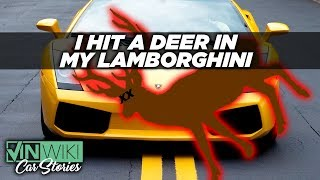 I hit a deer in my Lamborghini