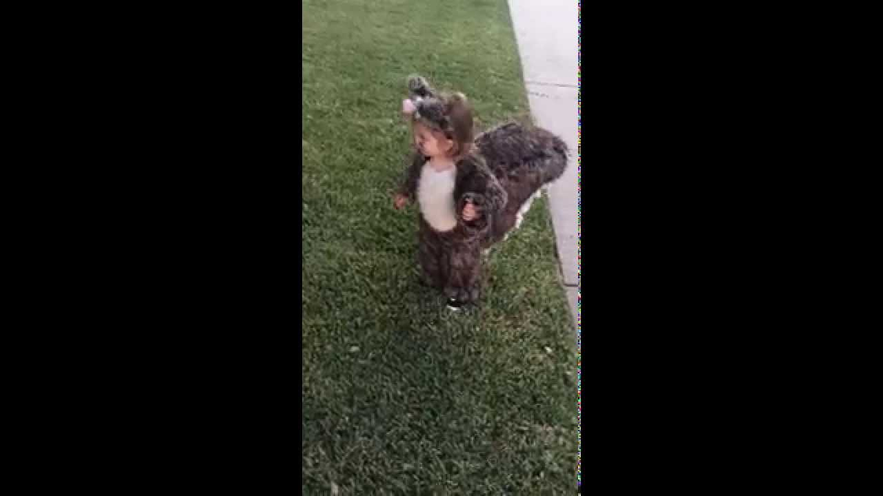 harpers halloween baby squirrel costume