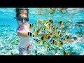 Hurghada, Albatros Aqua Park, Egypt 2017