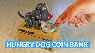 Hungry Dog Coin Eating Piggy Bank