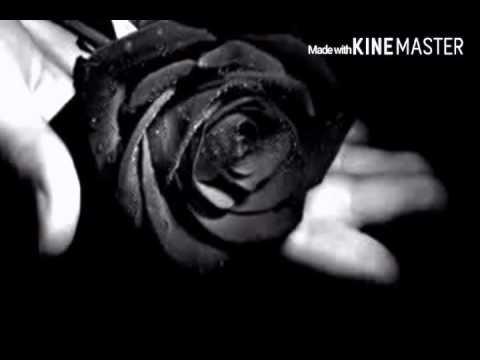 Bunga hitam-persembahanku