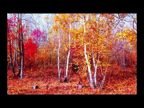 Октябрь.  Музыка Сергея Чекалина. October. Music By Sergey Chekalin.