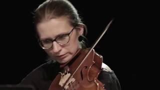 Arte dei Suonatori & Czeslaw Mozil - Krótka lekcja o muzyce Jana Sebastiana Bacha.