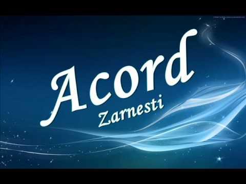 Formatia Acord Zarnesti sarba
