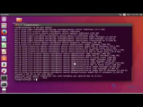 How to install Deluge on Ubuntu 16.04