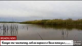 Ловля карася в Тамбовской области