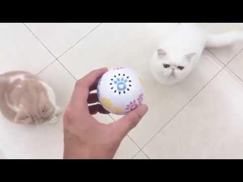 寵物智能陪伴球 智能玩具貓草|哎喔選好物