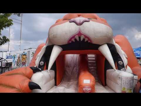 Kane County Fair Trip 2017