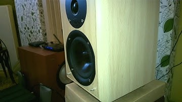 Heavy dubstep playing on small speakers Eltax
