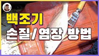 백조기낚시 시즌 손질/염장하는 방법[밀루유떼]