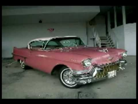 """PINK CADILLAC""  Sharon and Richard the Champions"