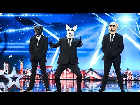 Paws With Soul Break It Down To Bruno Mars | Auditions Week 1 | Britain's Got Talent 2017