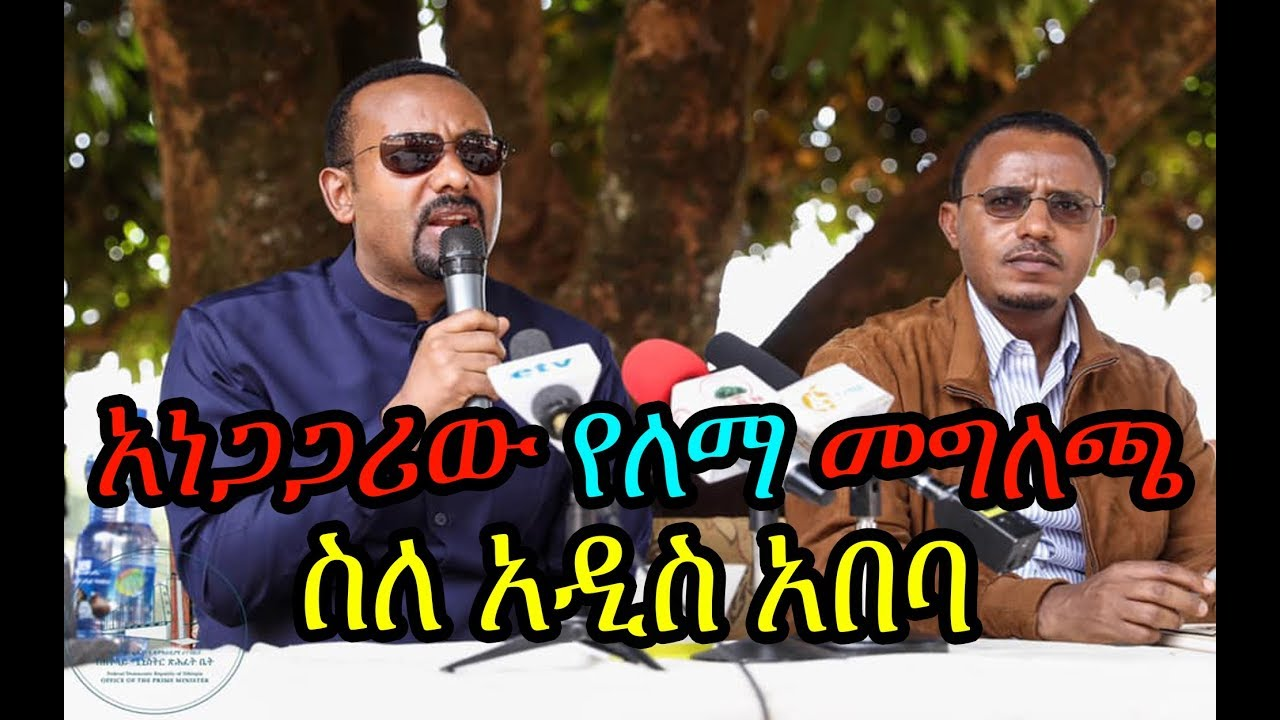 Lemma Megersa talks about Addis Ababa and the pressing issue at hand