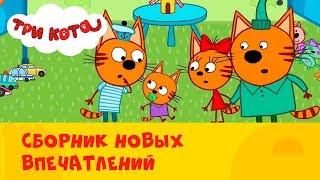 Три кота | Сборник новых 🙈 впечатлений | СТС Kids