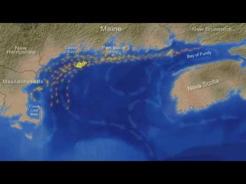 AquaVentus deepwater windpower plan risks Midcoast Maine's lobster industry