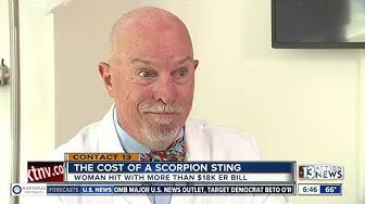 True cost of recovering from scorpion sting