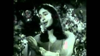 Ye Raatein Ye Mausam Nadi Ka Kinara- A Romantic Duet  Sung by Prof. Qasim Hasan Zaidi-Priya