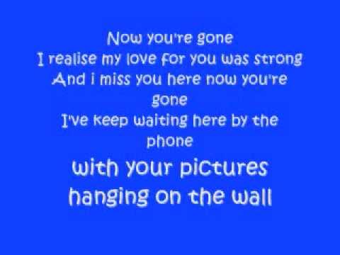 BasshunterNow Youre Gone with lyrics HQ