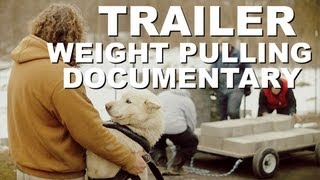 Pit Bull Weight Pull Documentary Trailer