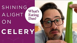 Dan Tries to Sell You on Celery | What's Eating Dan?