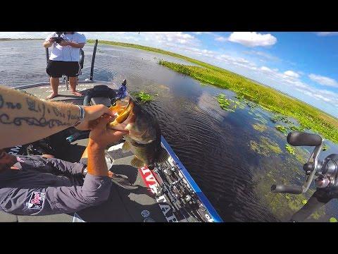 Fishing Grass Mats For Big Bass