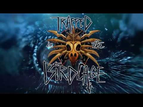 Season 2, Episode 1 - Trapped in the Birdcage
