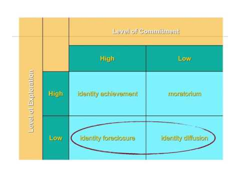 Developmental: 12.3 - Identity formation