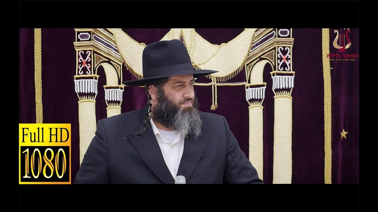 הרב רונן שאולוב בעוד שיעור שלא השאיר מילים !!! ביזוי התורה אל מול אוהביה בדורינו - טבריה 10-6-2018