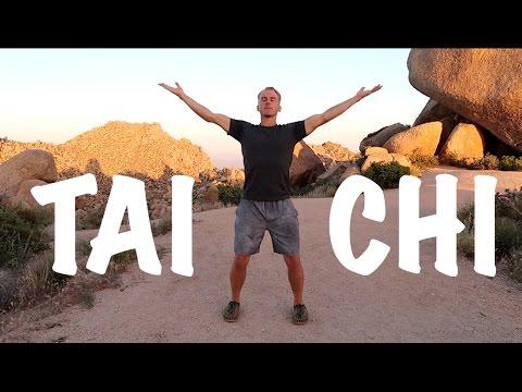 9 Tai Chi Moves - 15 Minute Daily Taiji Routine - Amazing