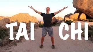 9 Tai Chi Moves - 15 Minute Daily Taiji Routine - Amazing