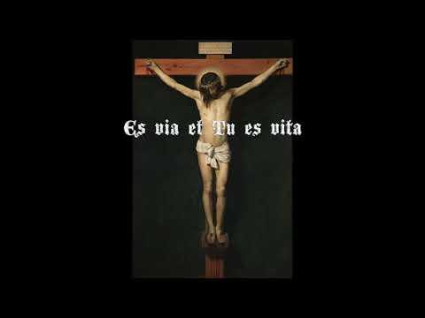 Lux Vitae (The Light of Life) - Clamavi De Profundis
