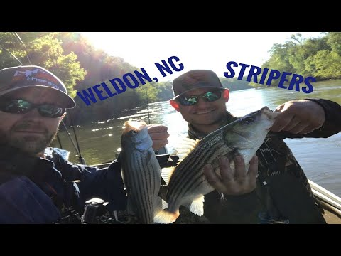 Striper Fishing The Roanoke River With Fire Line Fishing April 2019