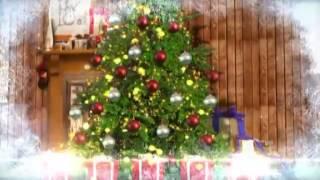 Вызов Деда Мороза и Снегурочки на дом детям от 3-х лет.(, 2014-12-09T01:15:27.000Z)